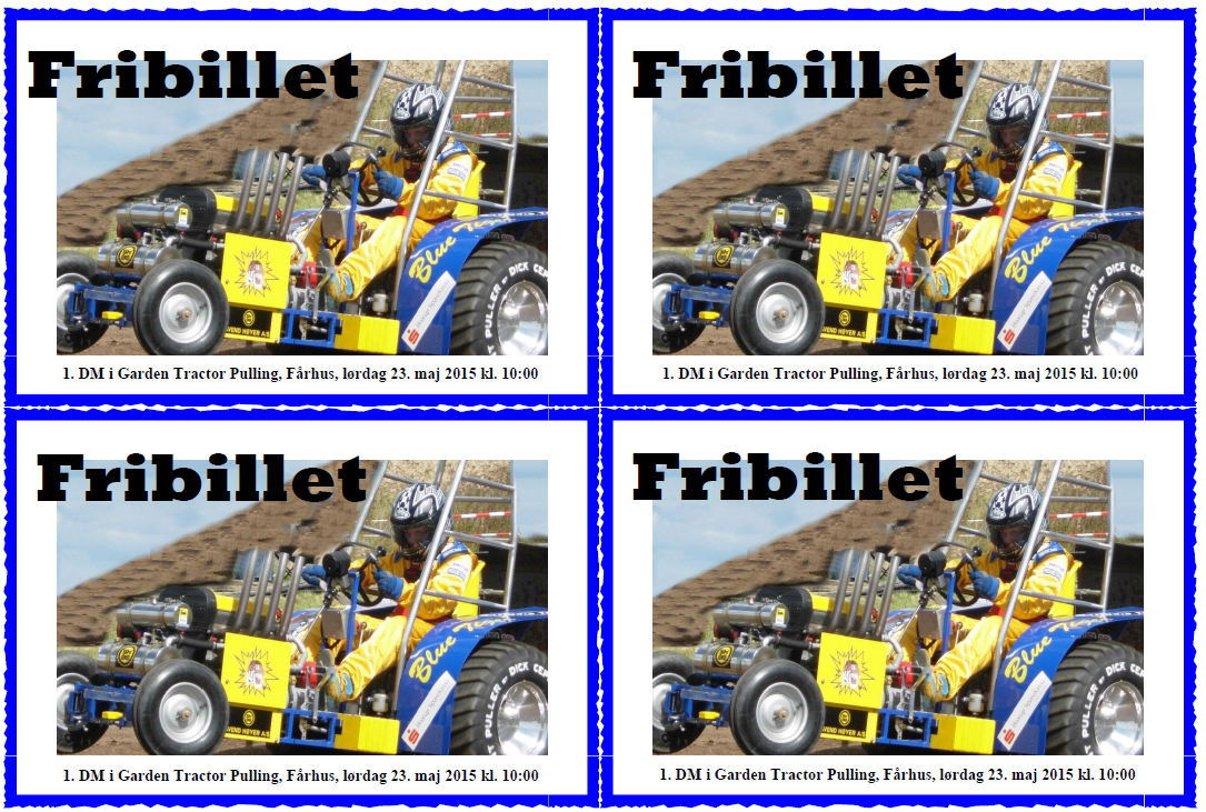 fribillet gtp 2015-4